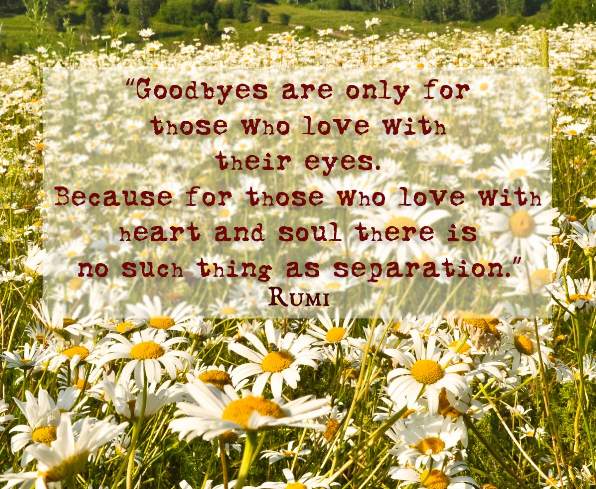 13 Quotes by Rumi on Love